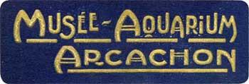 Le musée-Aquarium